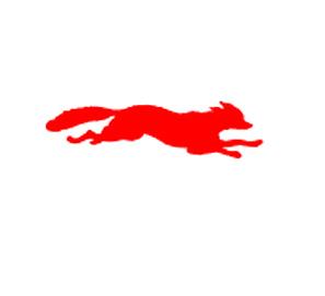 Premio Mejor Labor Editorial para Libros del Zorro Rojo y Salamandra