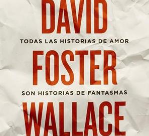 Biografía de David Foster Wallace de DT Max
