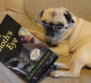 Fotos de perros leyendo