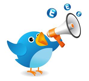 Estandarte.com y sus 4.000 seguidores en Twitter