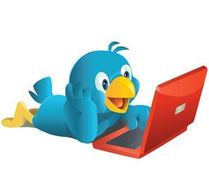 Estandarte.com y sus 4.500 seguidores en Twitter