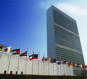 El libro más prestado en la biblioteca de la ONU