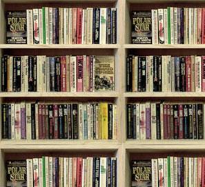 Maevanord y la literatura nórdica