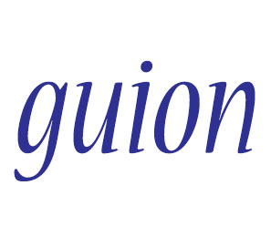 Guion se escribe sin tilde, guion con y sin tilde