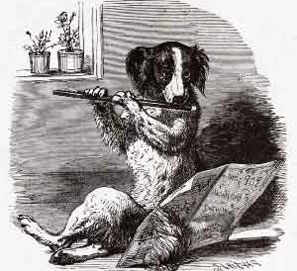 Perroflauta, no perro flautas ni perrosflautas
